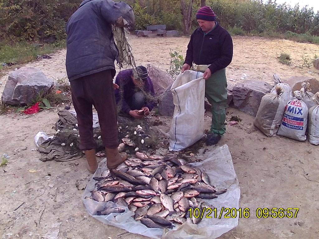 В Запорожской области браконьеры работают под прикрытием Рыбохраны — общественник