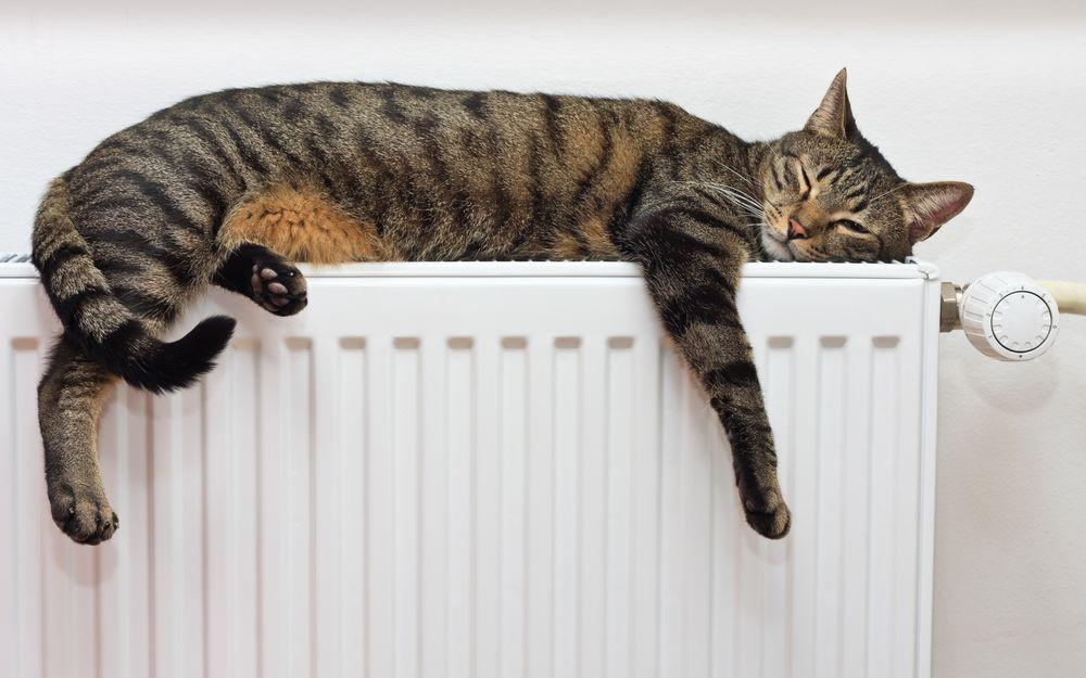 В Запорожье несколько домов в Днепровском районе остались без тепла (АДРЕСА)
