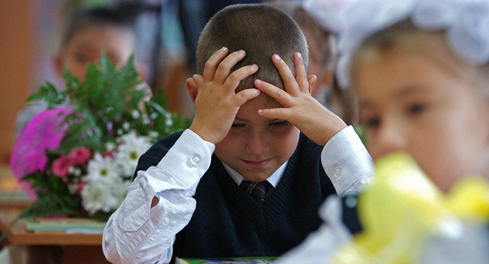 Без права выбора: в Запорожье в начальную школу теперь будут принимать по месту жительства (АДРЕСА)