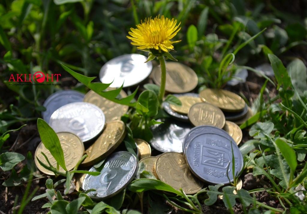 Цветок и деньги