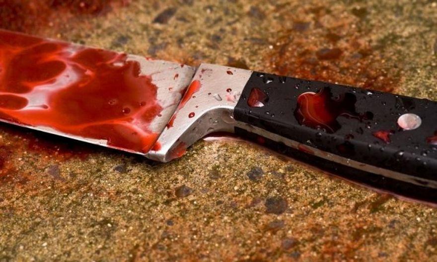 В Запорожской области женщина в пылу ссоры смертельно ранила своего родного брата (ФОТО)