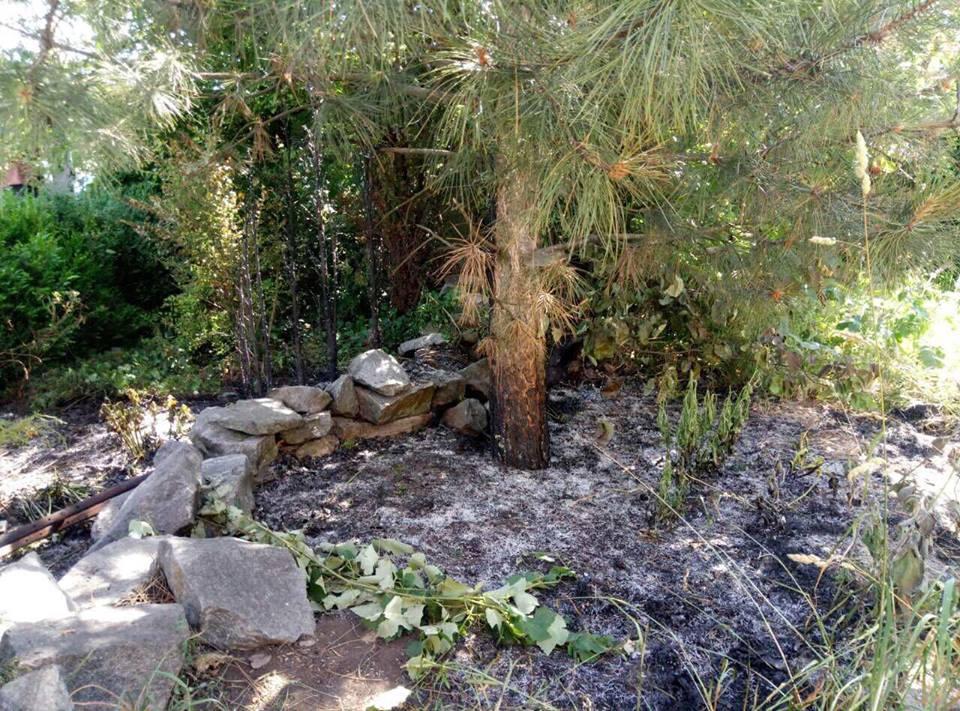В Запорожской области 77-летняя женщина погибла, сжигая сухую траву (ФОТО)