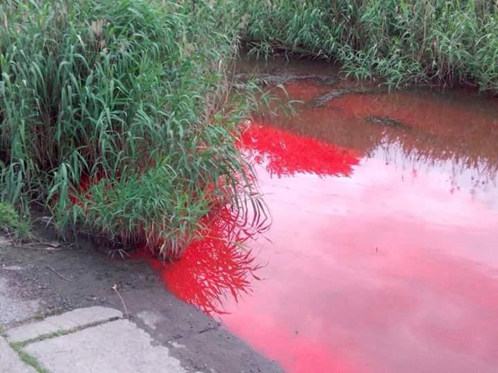 В Запорожье появилась еще одна «красная река» (ФОТО)