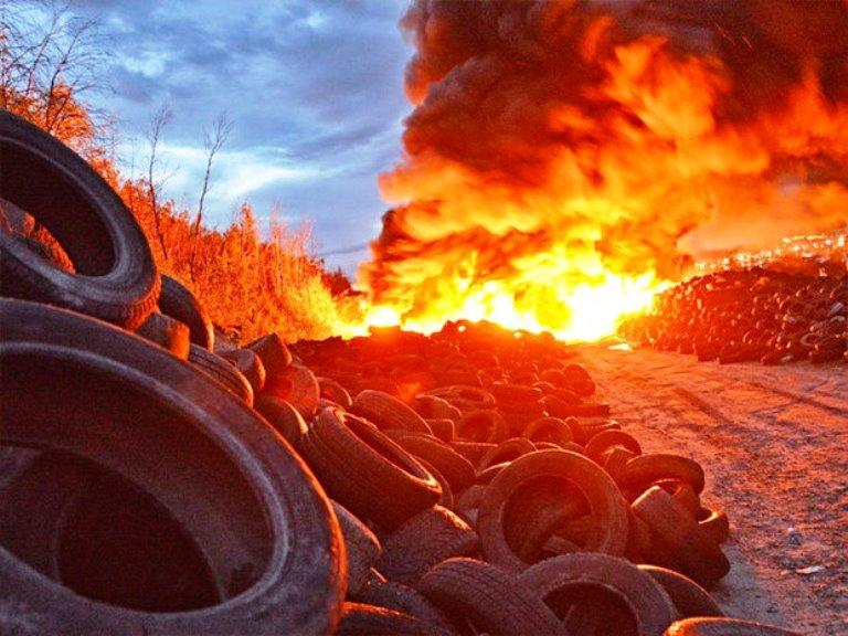 Поваленное дерево и пылающие шины: в Васильевке директор не пускал полицию на предприятие