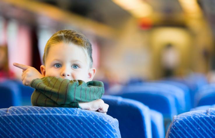 В Запорожской области из-за маршрутчика-шумахера едва не пострадал ребенок