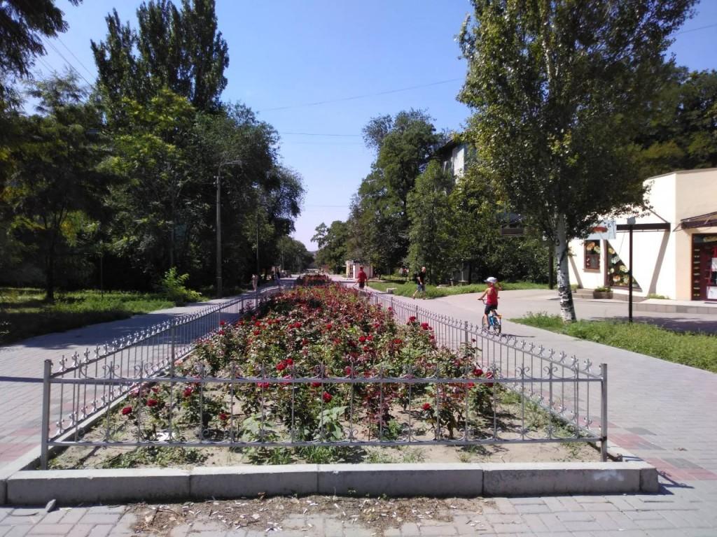 В Запорожье завершается реконструкция Аллеи роз: что уже сделано и есть ли огрехи (ФОТОРЕПОРТАЖ)
