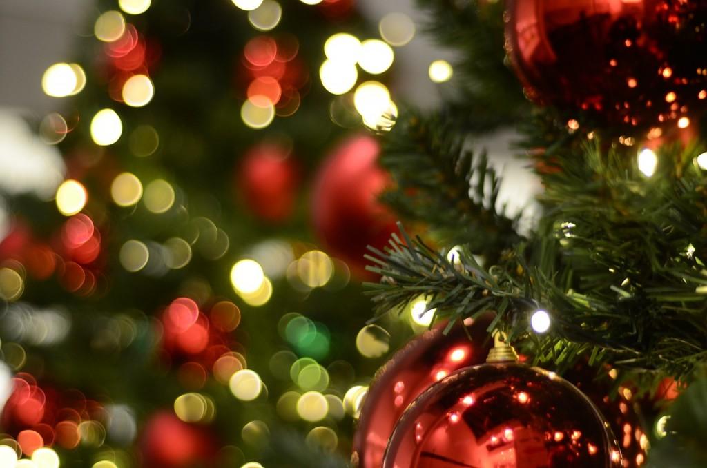 Рекорд: запорожец лишь спустя 8 месяцев избавился от новогодней елки (ФОТОФАКТ)
