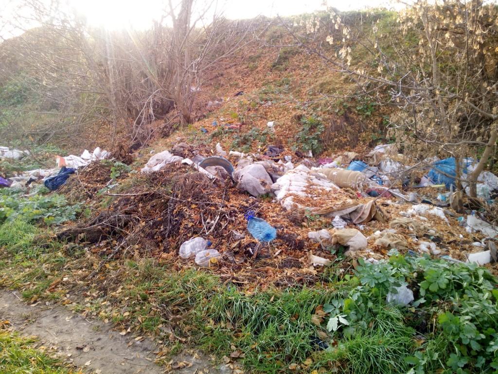 В Запорожье райадминистрация за 2 месяца не смогла убрать стихийные свалки в ботаническом заказнике (ФОТО)