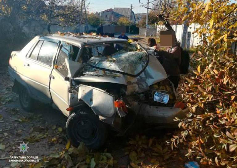 В Запорожье авто влетело в дерево: водителю стало плохо за рулем (ФОТО)