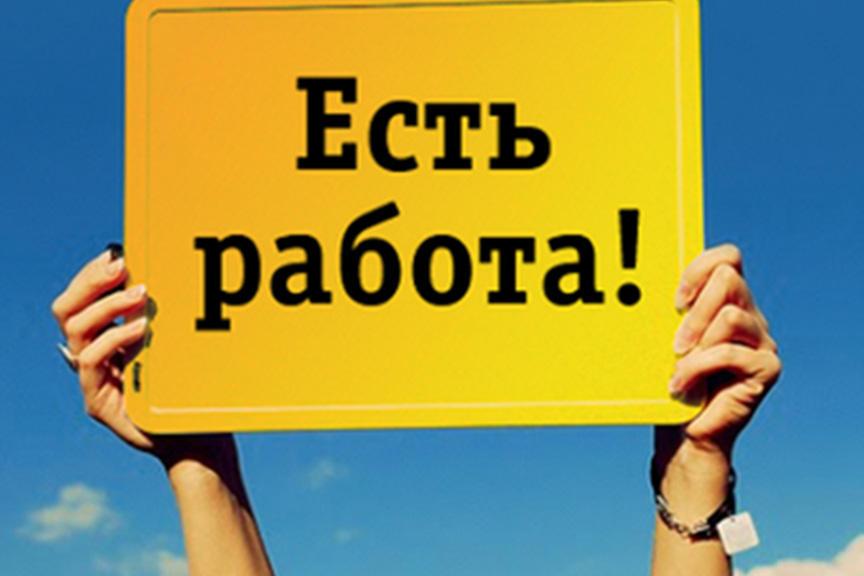 В Запорожской области подсчитали количество безработных