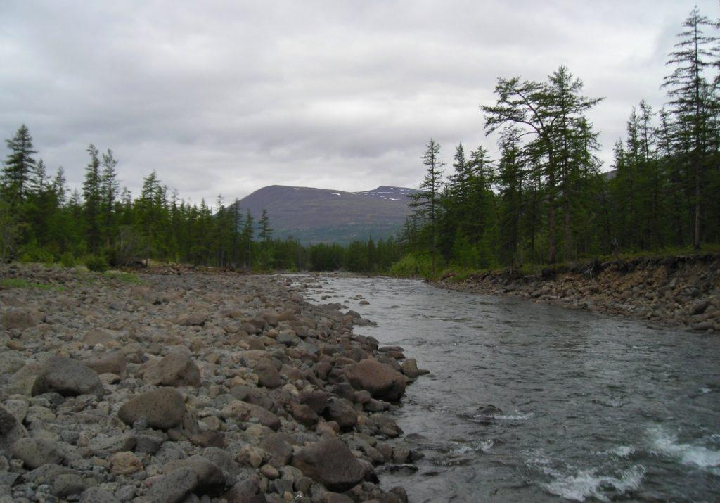В Запорожской области в реке нашли труп 20-летней девушки