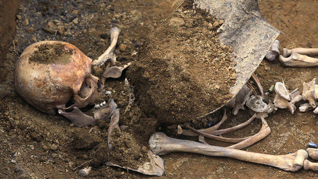 Скелет, который был найден в Запорожской области, опознали родственники