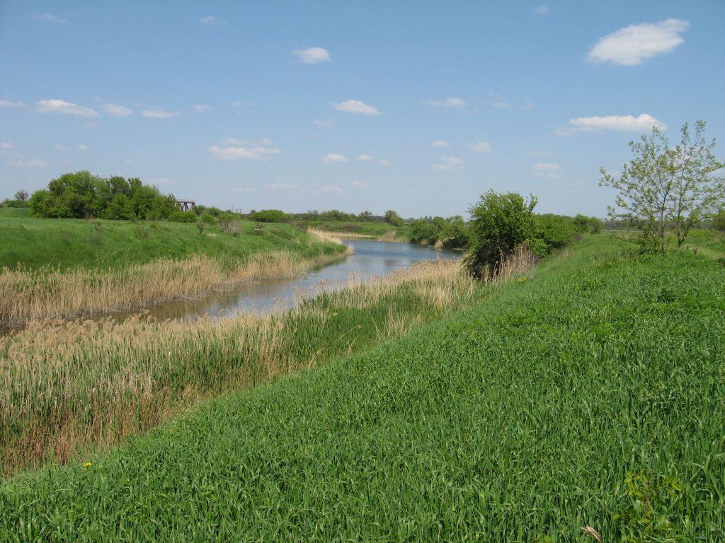 В Запорожской области всех неравнодушных зовут на уборку берега возле реки
