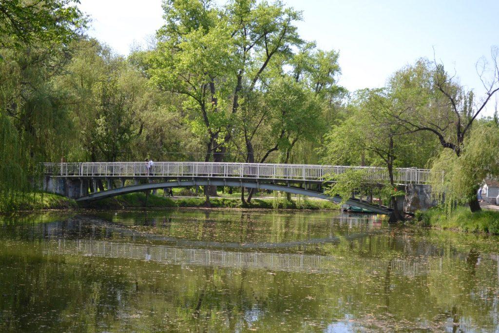 Пять очередей реконструкции «Дубовки»: стало известно каким будет парк (ФОТО)