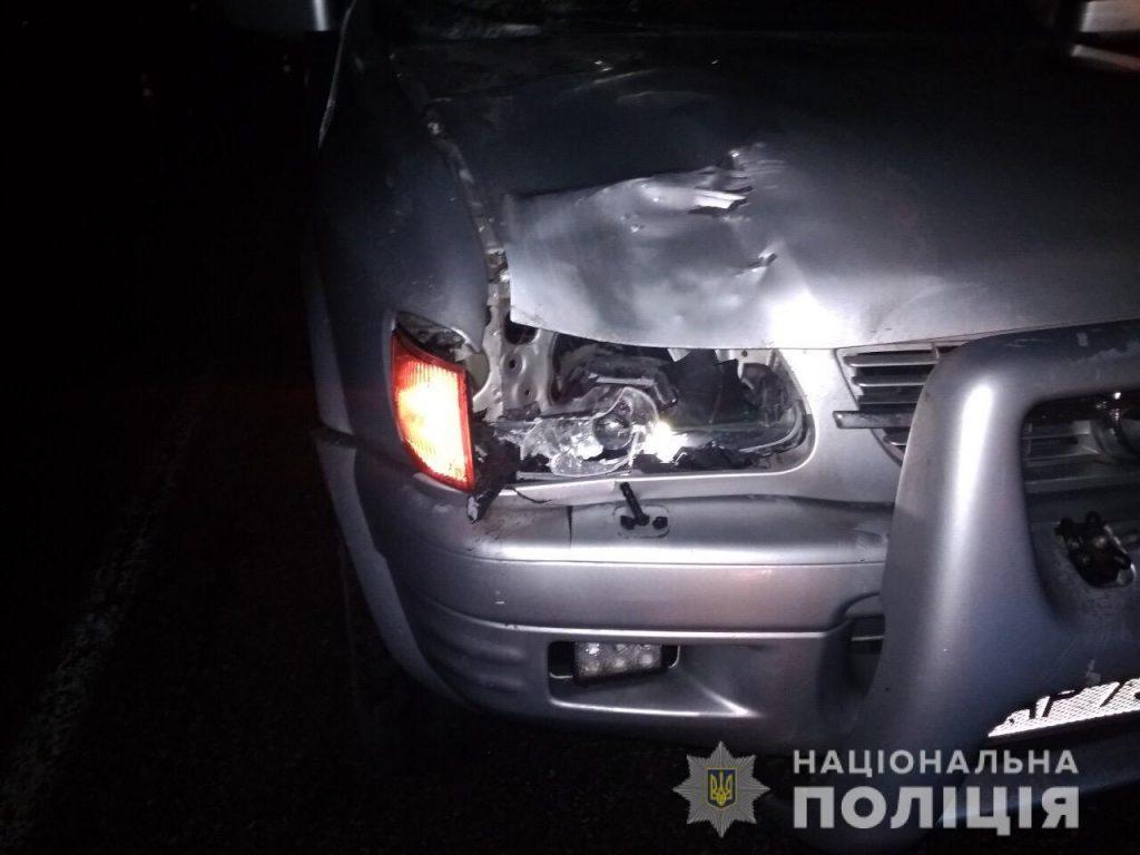 В Запорожской области под колесами авто погиб мужчина (ФОТО)
