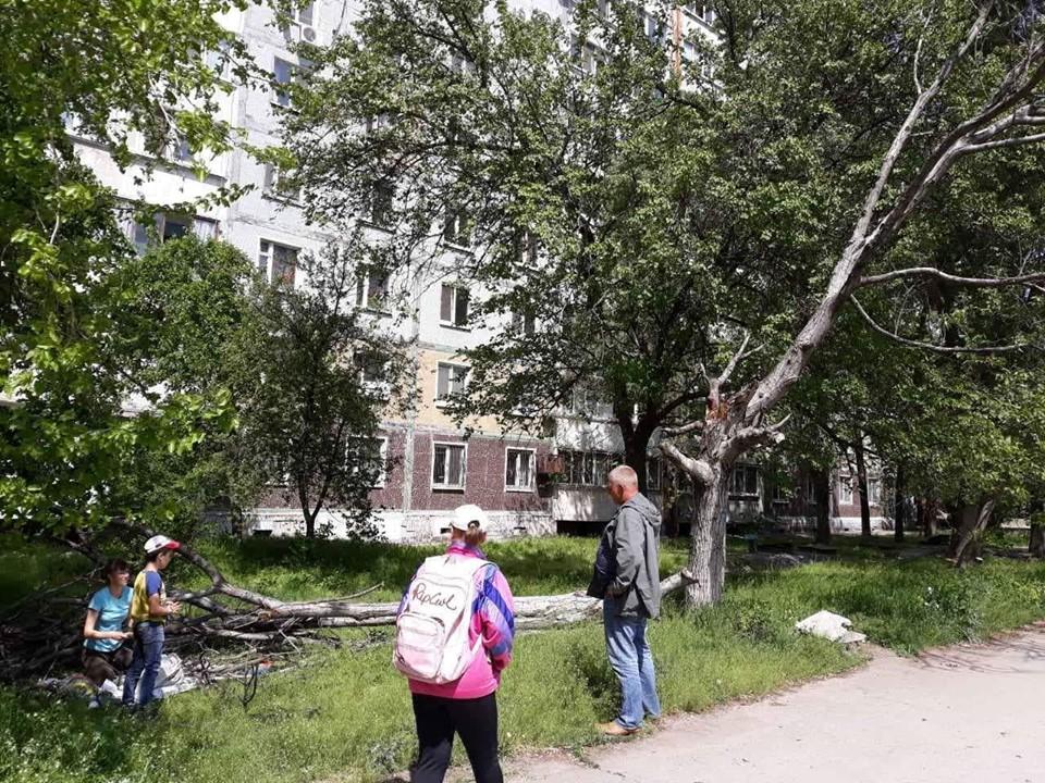 В Запорожье женщину и ребенка привалило сухим деревом (ФОТО)