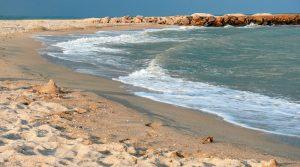 Кирилловка, Бердянск или Геническ: куда отправиться на море и сколько это будет стоить