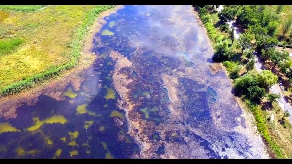 Экологическая катастрофа: под Запорожьем умирает некогда богатейший приток Днепра (ВИДЕО)