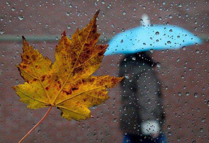 Похолодает и задождит: как изменится погода на длинные выходные в Запорожье и области