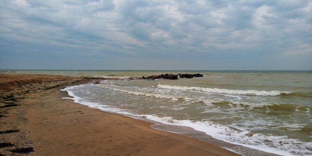 На запорожском курорте в море нашли пресноводных обитателей (ВИДЕО)