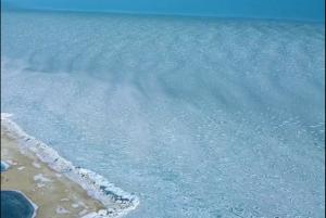 Ледоход у косы Бердянска показали с высоты (ВИДЕО)