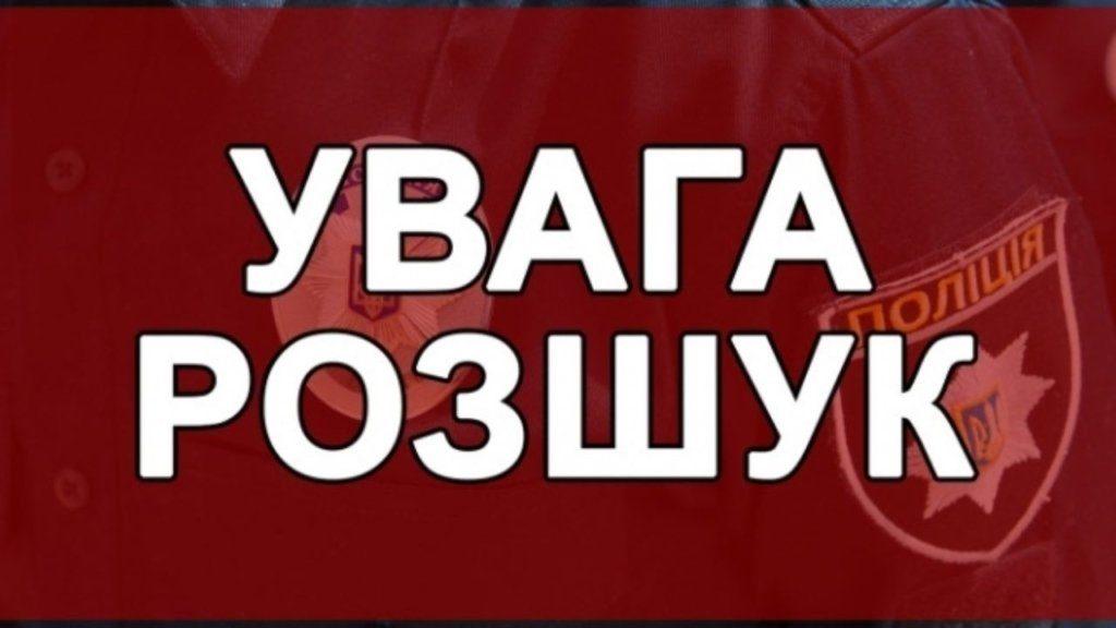В Запорожской области разыскивают водителя, который сбил двоих подростков вне проезжей части