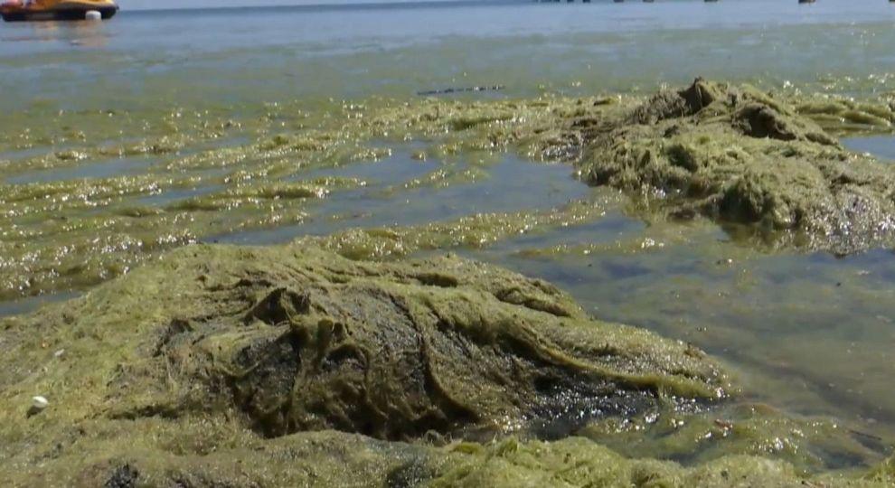 Уже не медузы: новые неприятности на морских курортах Украины после шторма
