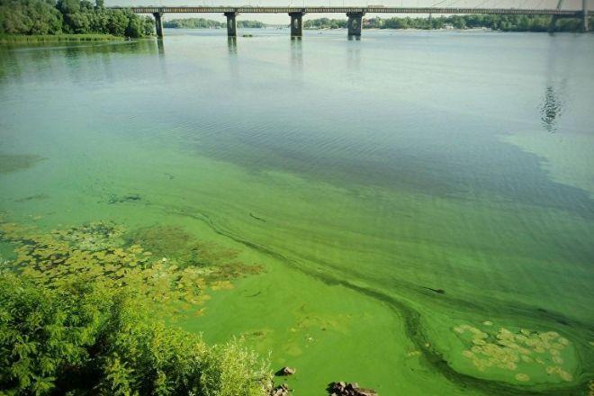В Днепре ухудшается качество воды — эксперты