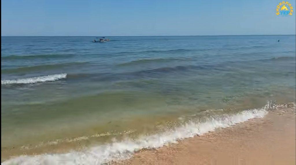 На каких курортах Азовского моря исчезли медузы (ВИДЕО)