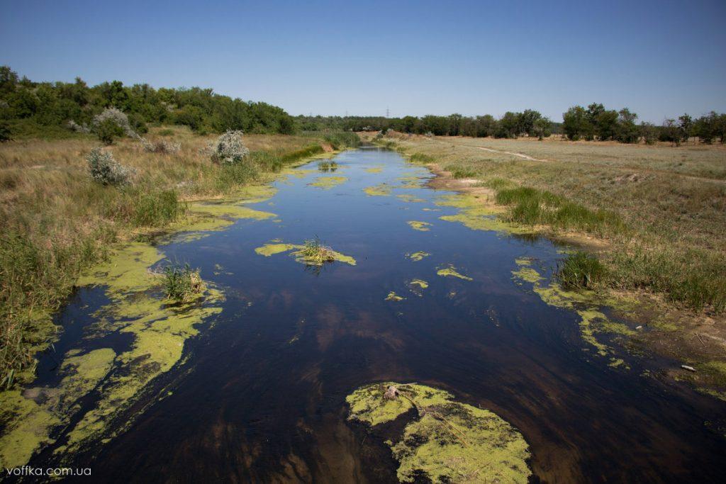 В Запорожской области высыхает река Молочная: ученые бьют тревогу (ВИДЕО)