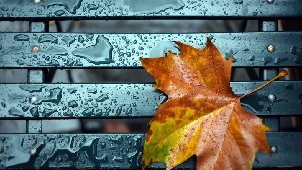Достаем теплые вещи: в Запорожье и области на выходные изменится погода