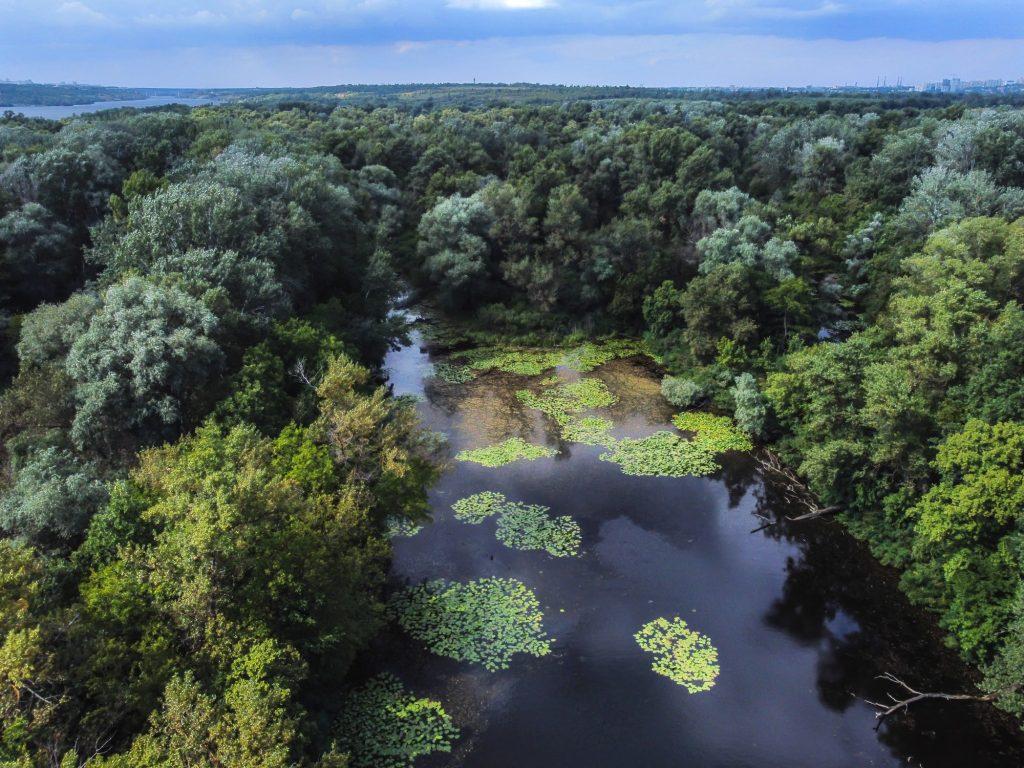 Фотограф запечатлел мистические Хортицкие озера с высоты (ВИДЕО)