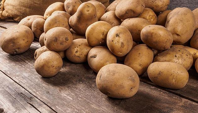 В Украине резко подорожает картофель