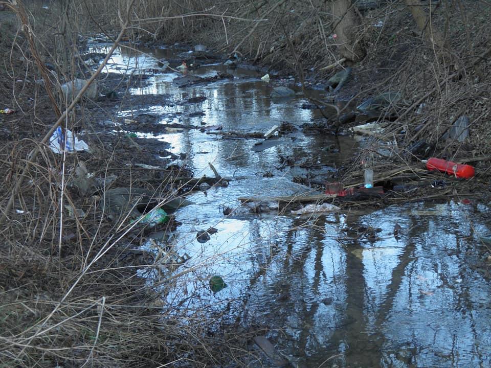 В Запорожье реализуют новаторскую технологию очистки рек