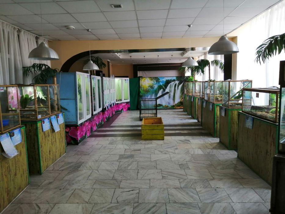 В Запорожье продают выставку «Змеиная ферма»: цена и фото